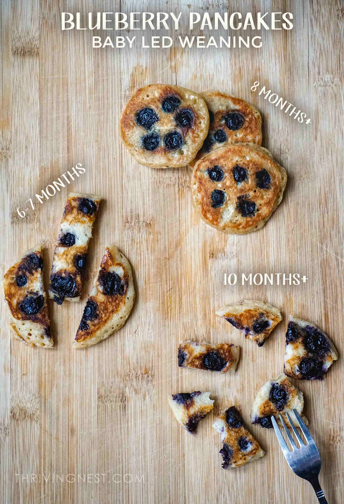 Baby led weaning with blueberry pancakes ways to cut and serve to 6 months babies and up.
