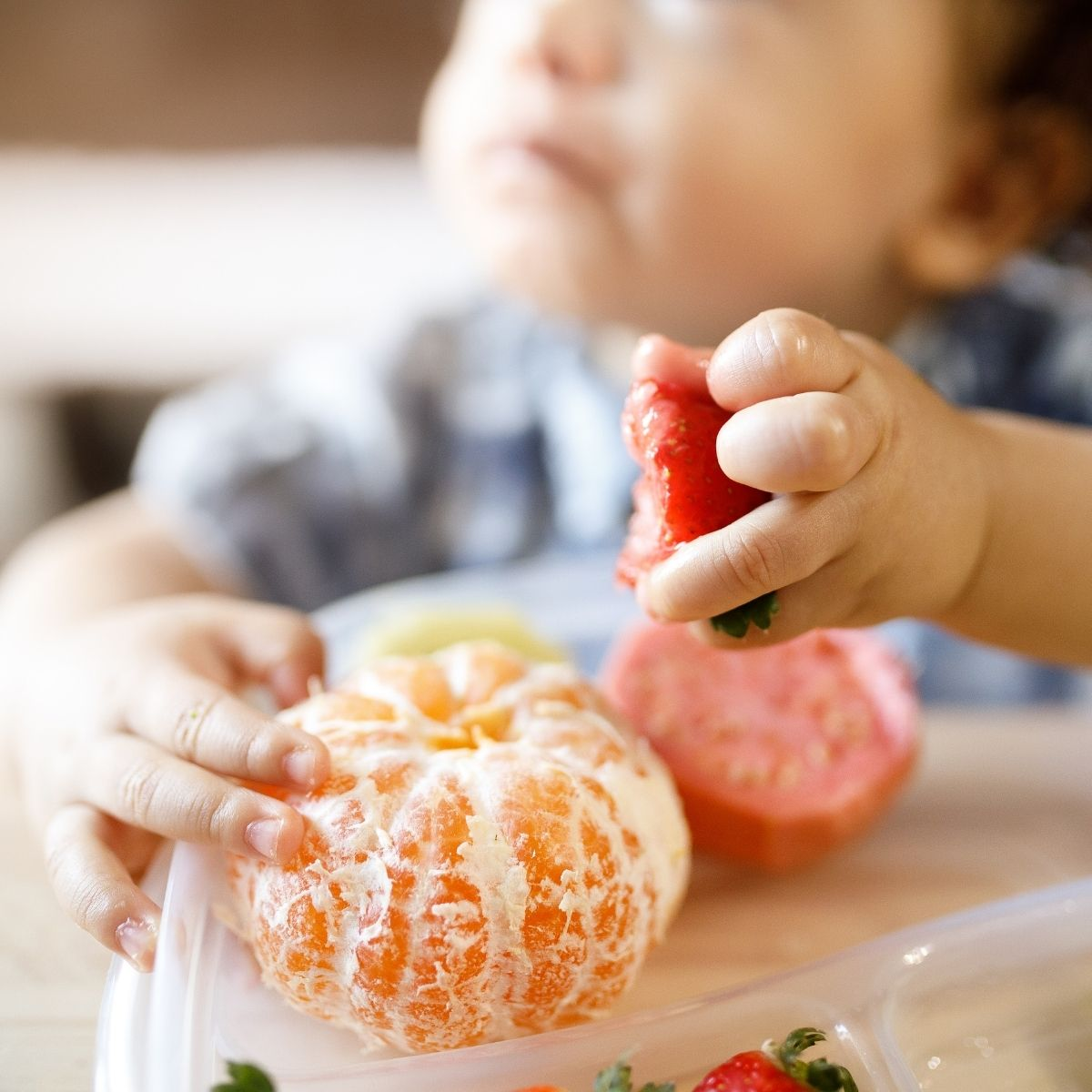 First foods for baby led weaning.