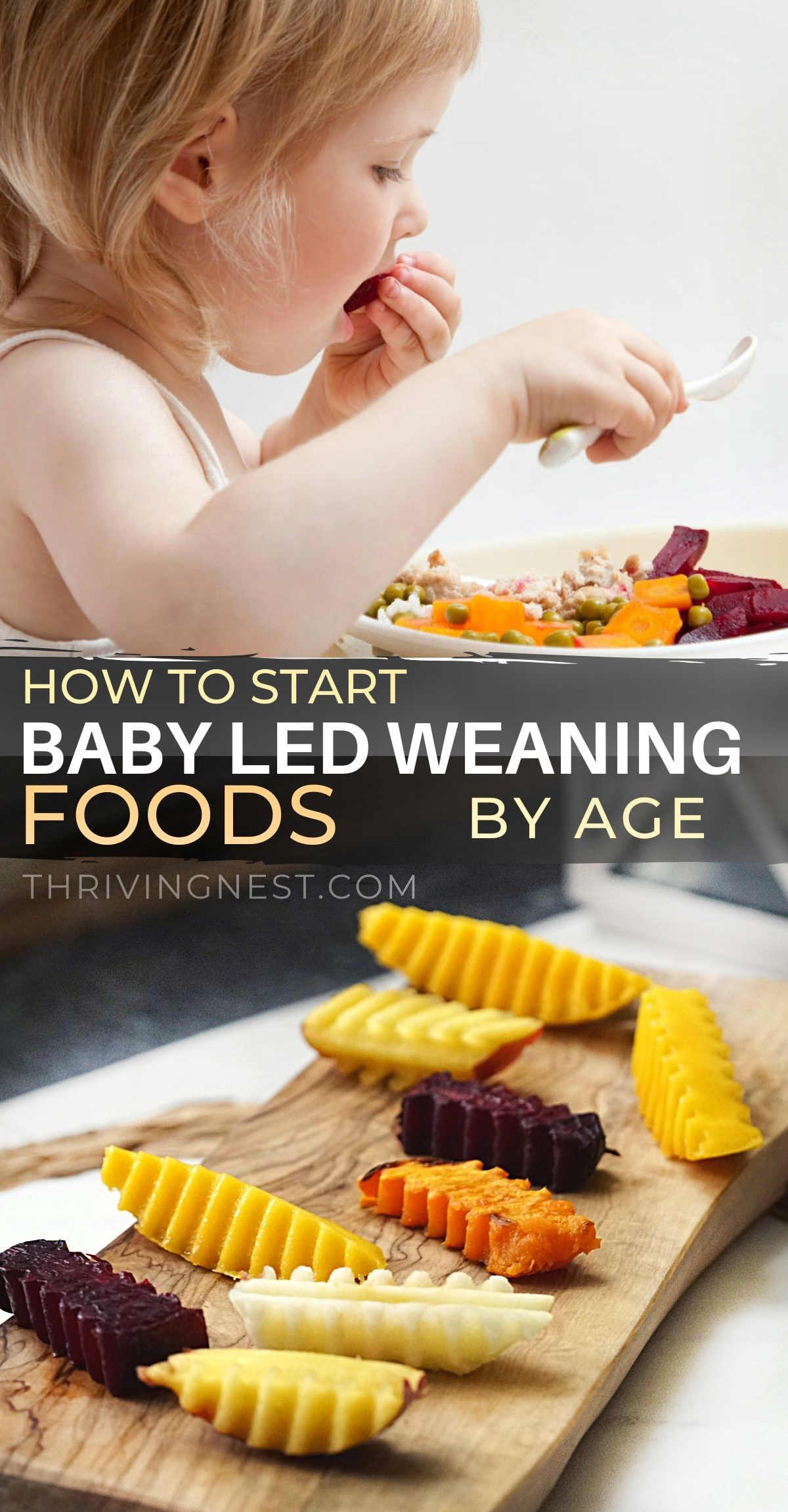 Want to start baby led weaning and don't know how? Here is a list of best baby led weaning foods to start with according to age. See benefits of BLW vs purees. Also blw books and referencing studies, baby led weaning recipes and starter foods, all in one place. #babyledweaning #blw #firstfood #babyfood #starterfood #6monthold #startingsolids.